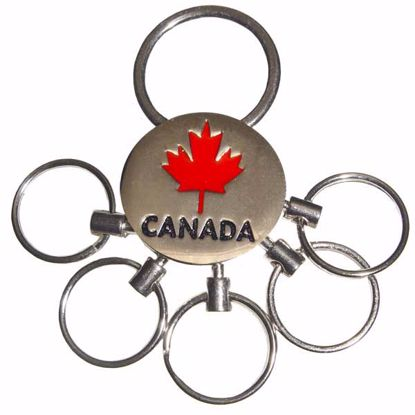 Picture of Metal Key Tag w/ 5 Rings