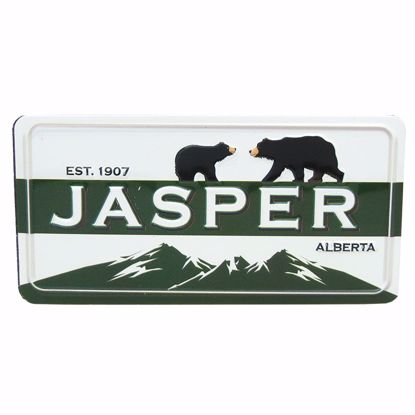 Picture of Magnets Metal License