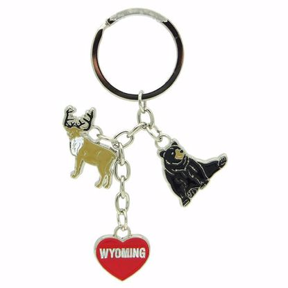Picture of Keytags Met Multi Charm